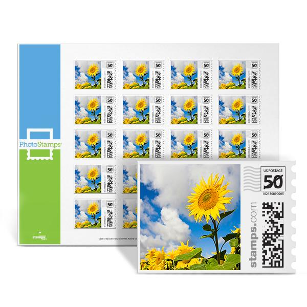Sunflowers PhotoStamps
