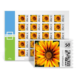 Treasure Flowers PhotoStamps