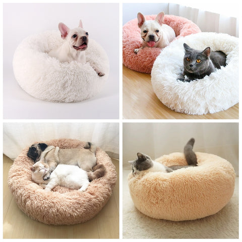 Image of Comfy Cat Bed