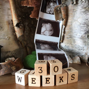 Adorable Milestone Blocks
