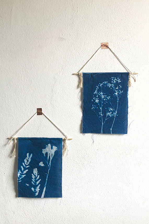 DIY Cyanotype Kit