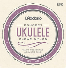 Load image into Gallery viewer, D'Addario EJ65 Concert Ukulele Strings