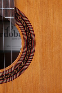 Cordoba Iberia Series C5 Classical Acoustic Guitar Solid Cedar Top Gloss Finish