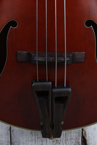 Takamine TB10LH 4 String Fretless Upright Acoustic Electric Bass Guitar w Case