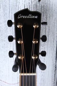 Breedlove USA Masterclass Dreadnought Exclusive Acoustic Electric Guitar w Case