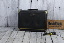 Load image into Gallery viewer, Peavey Ecoustic E208 Acoustic Guitar Amplifier 2 Channel 30 Watt 2 x 8 Combo Amp