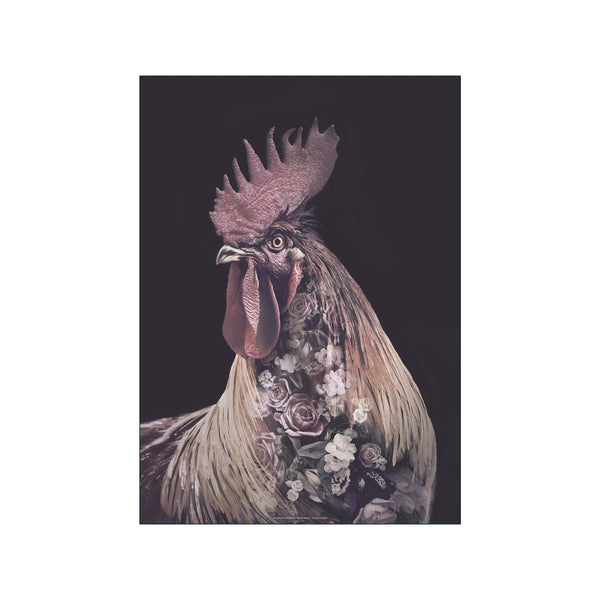 Portraits Burgundy Rooster