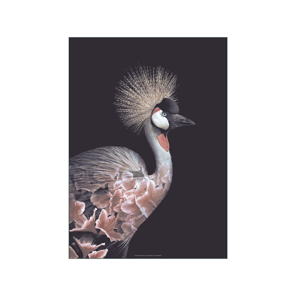 Portraits Crowned Crane