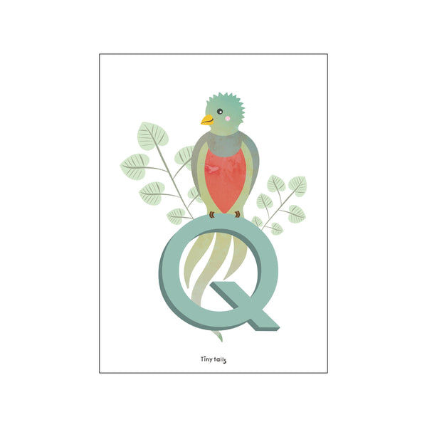 Q for Quetzal