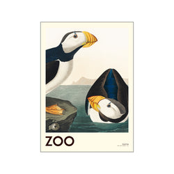 The Zoo Collection — Puffin — Edt. 001