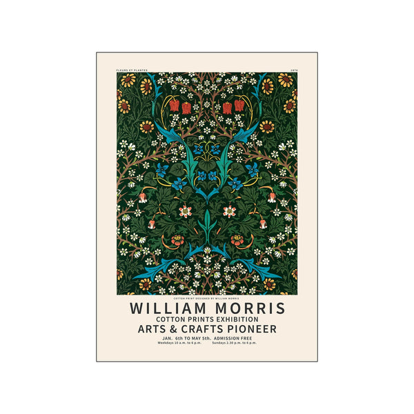 William Morris - Cotton pioneer