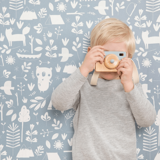 play wooden camera