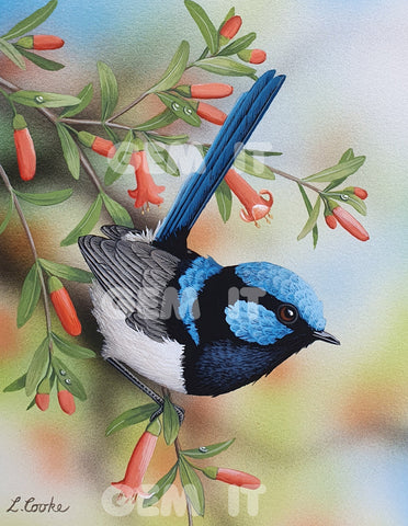 Lyn Cooke - Australian Artist specializing in Wildlife