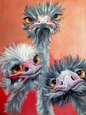 3 Emus - Full Drill Diamond Painting - Specially ordered for you. Delivery is approximately 4 - 6 weeks.