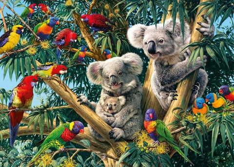 Australian Koalas  - 50 x 70cm - Full Drill (round) Diamond Painting Kit - Currently in stock