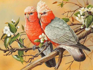 Birds 15 - Full Drill Diamond Painting - Specially ordered for you. Delivery is approximately 4 - 6 weeks.