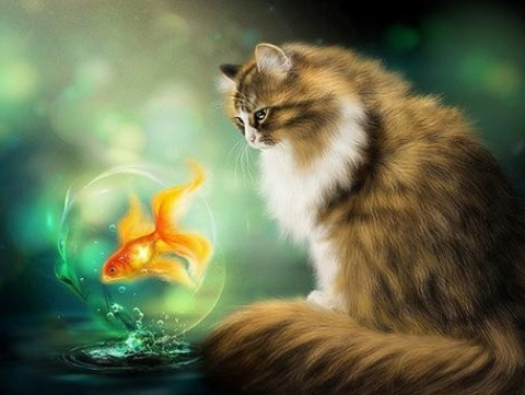 Special Order - Cat and Goldfish- Full Drill diamond painting - Specially ordered for you. Delivery is approximately 4 - 6 weeks.