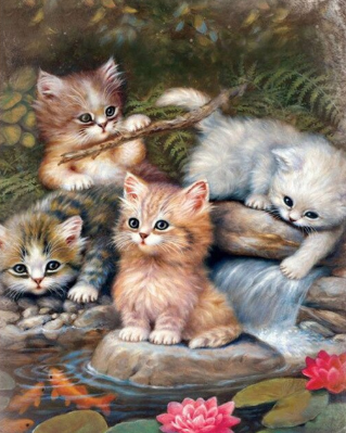 Special Order - Cats and the Pond - Full Drill Diamond Painting - Specially ordered for you. Delivery is approximately 4 - 6 weeks.