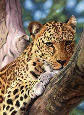 Special Order - Cheetah in a Tree - Full Drill diamond painting - Specially ordered for you. Delivery is approximately 4 - 6 weeks.