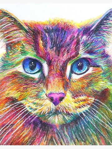 Colourful Cat 05 - Full Drill Diamond Painting - Specially ordered for you. Delivery is approximately 4 - 6 weeks.