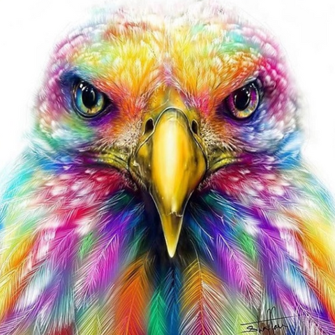 Special Order - Colourful Eagle - Full Drill Diamond Painting - Specially ordered for you. Delivery is approximately 4 - 6 weeks.