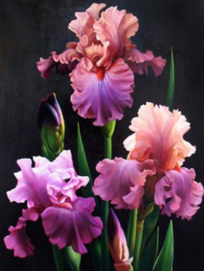 Flowers 014 Full Drill Diamond Painting - Specially ordered for you. Delivery is approximately 4 - 6 weeks.