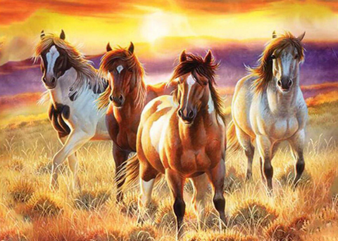 Special Order - Four Horses- Full Drill Diamond Painting - Specially ordered for you. Delivery is approximately 4 - 6 weeks.