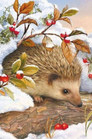 Hedgehog In Snow- Full Drill Diamond Painting - Specially ordered for you. Delivery is approximately 4 - 6 weeks.