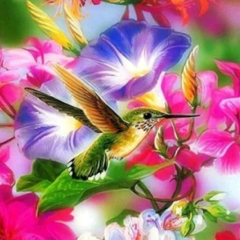 Special Order - Humming Bird 02 - Full Drill Diamond Painting - Specially ordered for you. Delivery is approximately 4 - 6 weeks.