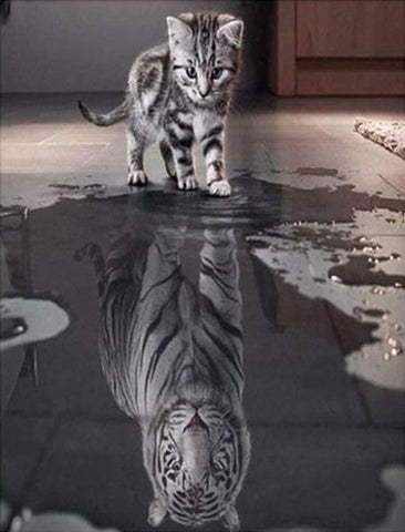 Kitten Reflection -  Full Drill Diamond Painting - Specially ordered for you. Delivery is approximately 4 - 6 weeks.