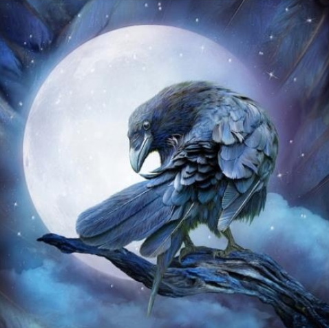 Special Order - Moonlight Crow - Full Drill Diamond Painting - Specially ordered for you. Delivery is approximately 4 - 6 weeks.