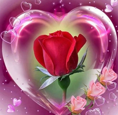 Special Order - Roses in Heart - Full Drill Diamond Painting - Specially ordered for you. Delivery is approximately 4 - 6 weeks.
