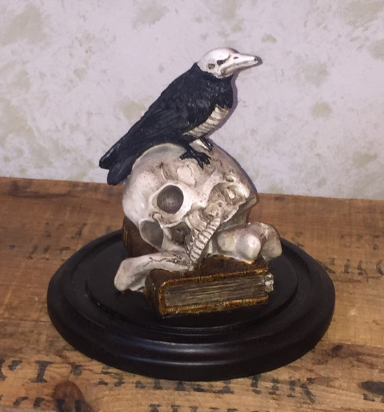Deadly Crow on skull in display dome