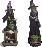 Potion Casting Witch Figure with Alter