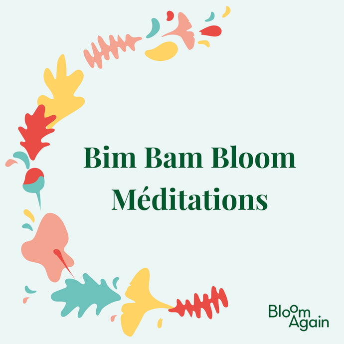 Bim Bam Bloom - les méditations