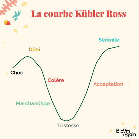 courbe kubbler ross