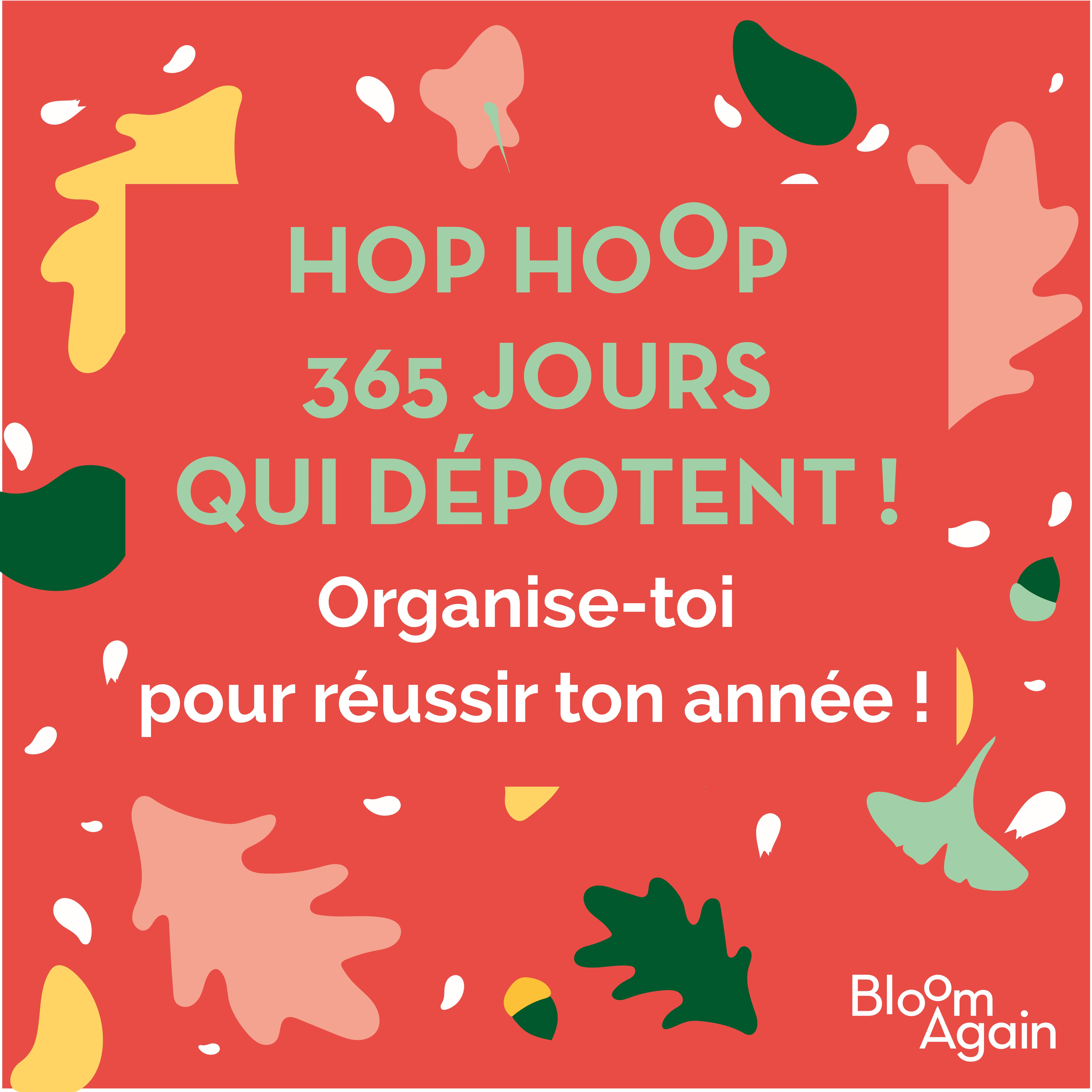 Hop Hop 365 jours qui dépotent ! - version ebook - Bloom Again