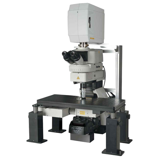 A1R MP+ Multiphoton Confocal Microscope