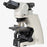 Ci-L - Clinical Upright Microscope