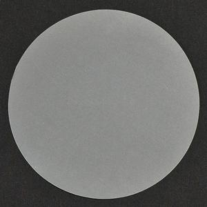 "GP-112V - 8"" SiC Disc 600 Grit"