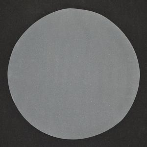"GP-179 - 12"" SiC Disc 320 Grit"
