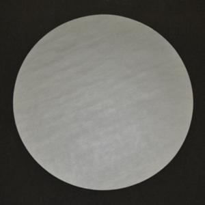 GPE-12-800 - 300mm SiC Disc Plain Back P800