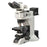 LV100NPOL - Upright Polarizing Microscope