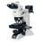 LV150N - Upright Digital Microscope