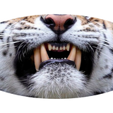 Tiger Face (6 Styles!) - Adult & Youth  Non-Medical Face Mask - abby+anna's boutique