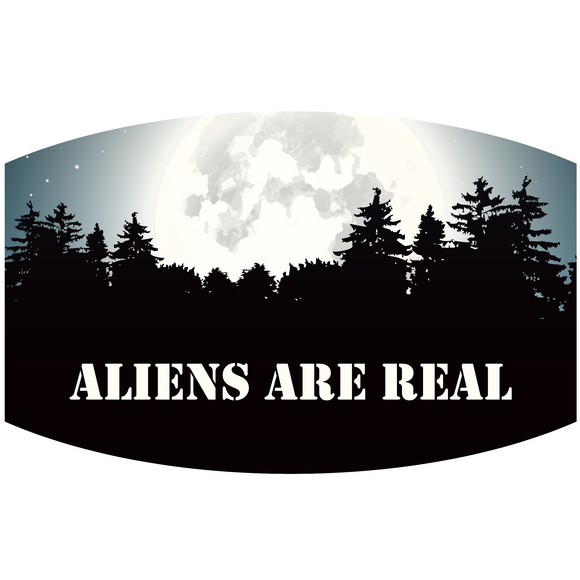Aliens Are Real - Adult & Youth  Non-Medical Face Mask (5573854527653)