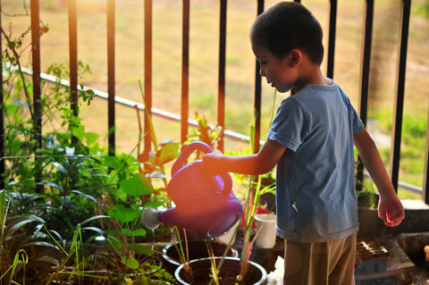 boy watering plants in garden