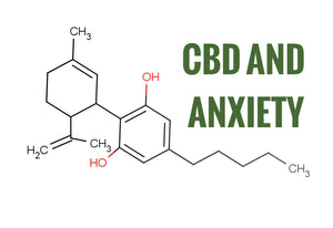 6 Everyday Anxieties CBD Can Soothe