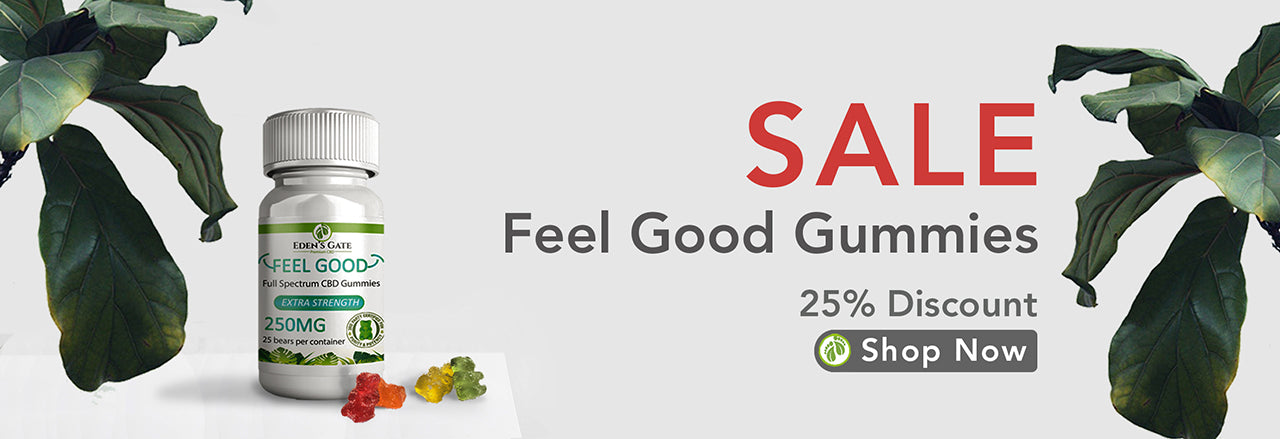 CBD Gummies Bears Sale