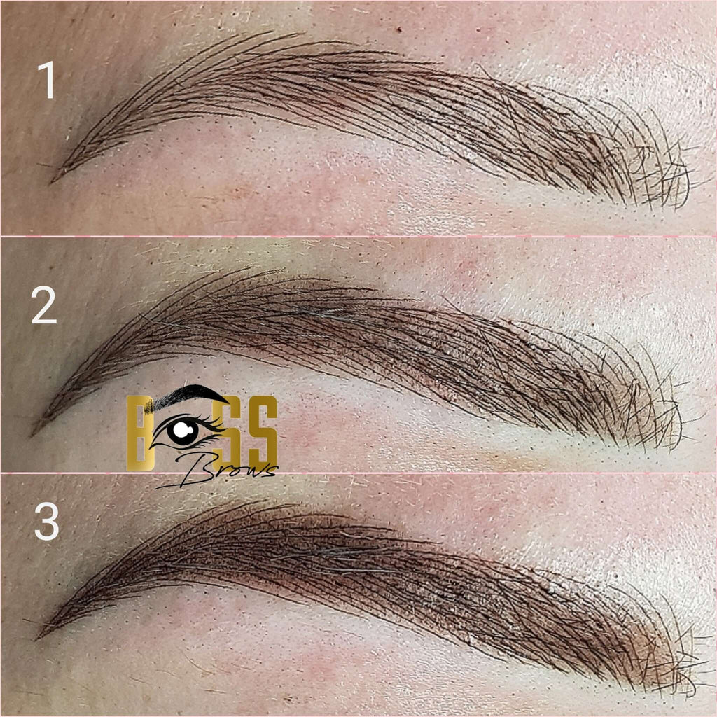 Boss Brows Microblading combination brows permanent makeup Botched Ink training